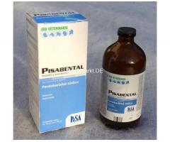 Kaufen Sie hochwertiges Pentobarbital-Natrium aus Nembutal
