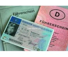 Holen Sie sich Ihren registrierten Führerschein.