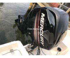 Außenbordmotor Außenborder Mercury F50 ELPT EFI mit 50 PS
