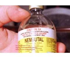 Kaufen Sie nembutales Pentobarbital-Natrium von einem legiti
