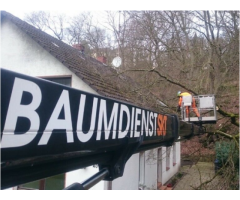 BAUMPFLEGER GESUCHT !!!!