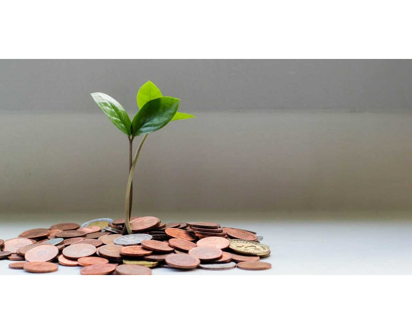Kreditfinanzierung oder Investitionsprojekt. - 1/1